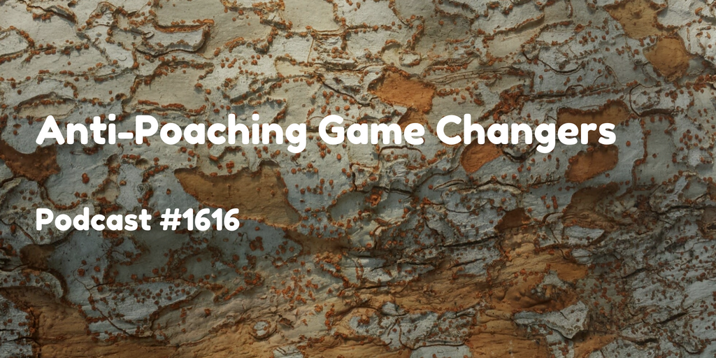 #1616: Anti-Poaching Game Changers